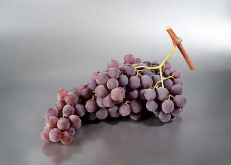 Produzione uva da mensa albani sicilia - Red globe uva da tavola ...